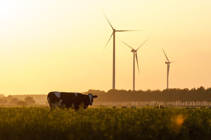 De drie windmolens bij Houten.