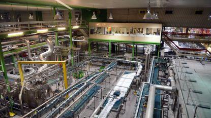 AB InBev zit op ecologische koers: alle Belgische brouwerijen brouwen binnenkort met 100% hernieuwbare elektriciteit van zonne-energie
