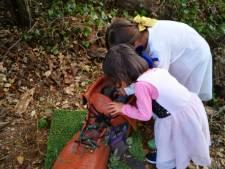 Kabouterbos Sprookjesfestival gaat aan eigen succes ten onder
