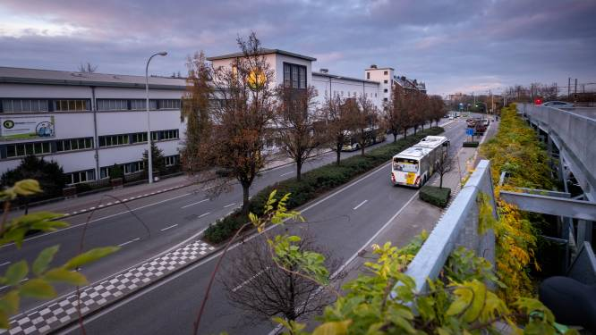 Studie op komst naar verkeersstromen: op weg naar eenrichtingsverkeer op vesten?
