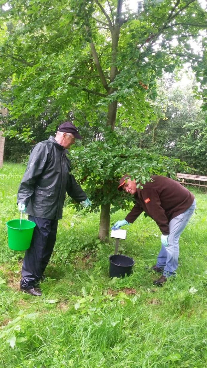 Vrijwilligers Frank en Ferdinand aan het werk.