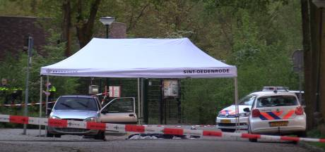 Verdachte moord Daan Hoefs legt verklaring af: 'Ik schoot snel achter elkaar'