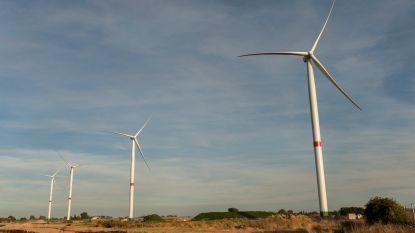 """Gedeputeerde Vanlerberghe deelt mening over windmolens: """"Niet in mijn achtertuin, maar waar dan wel?"""""""