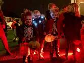 Bewoners Veenendaalstraat trakteren Tilburgers op groots Halloween-spektakel