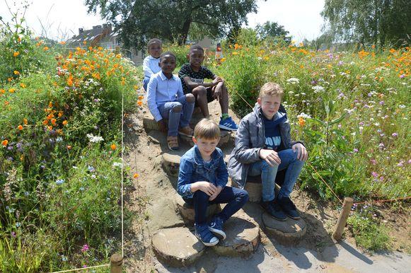 Enkele leerlingen op de nieuwe groene speelplaats van het KCD in Denderleeuw.