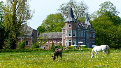 Trudo centraal op 31ste Open Monumentendag in Sint-Truiden