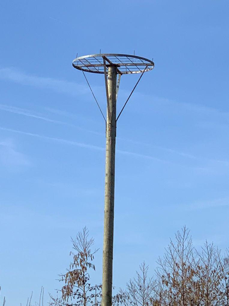 Willy Vanlandschoot bouwt nestpalen.