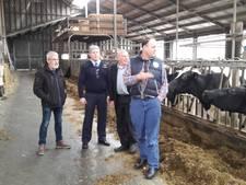 Melkveehouders: 'Koeien in de stress door laagvliegende helikopters'