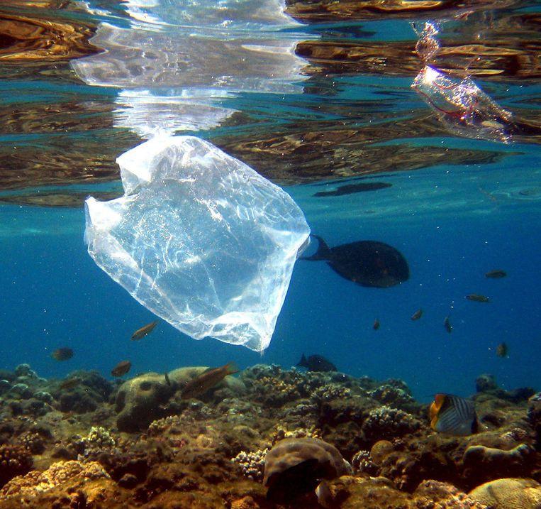'Een klein deel van het plastic komt in zeeën terecht, 'plastic soep' genoemd.' Beeld EPA