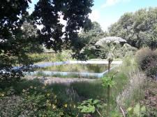 Hardinxvelds buitenbad mogelijk in de zomer van 2021 weer open