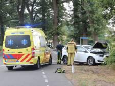 Automobilist raakt onwel en botst tegen boom in Notter