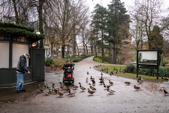 Eenden in het Kronenburgerpark.