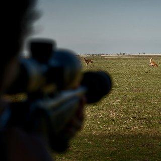 Jager mag geen geluiddemper op zijn geweer om gehoor te beschermen