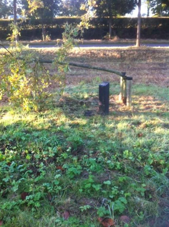 Een vernielde gedenkboom in Zierikzee
