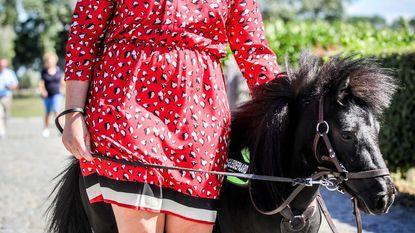 """Eerste blindengeleidepaardje in Europa: """"Dinky en ik zijn nu al beste vrienden"""""""