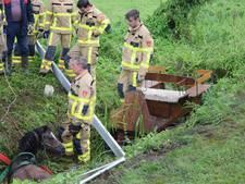 Brandweer takelt pony en rijtuig uit sloot in Hummelo