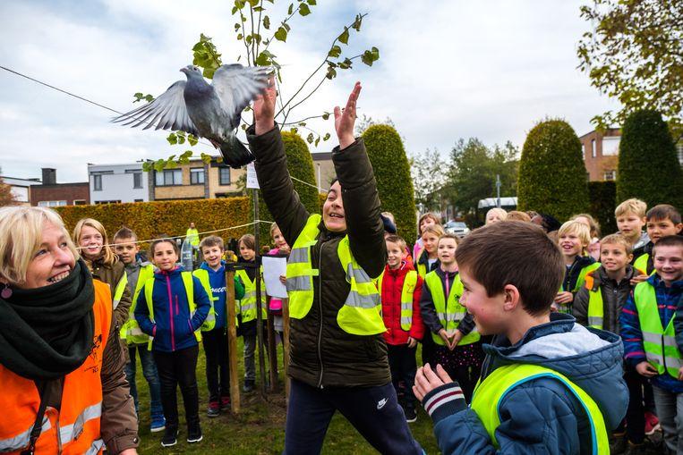 2018/11/08, Schelle, Belgium. Twee vredesduiven worden door de leerlingen uitgegooid.