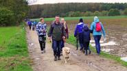 Zeven wandelzondagen in Vlaams-Brabant en de eerste gaat van start in Asse