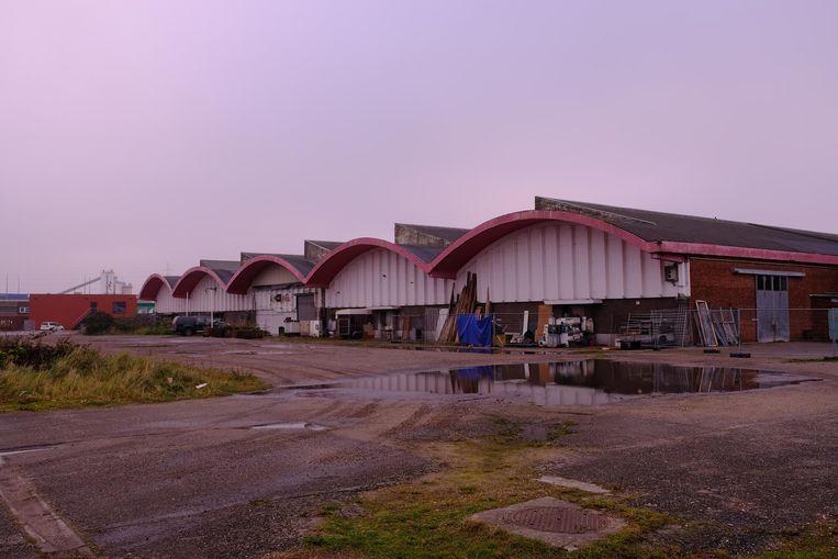 Op de Slachthuissite verrijzen 4 woontorens, goed voor 5.000 extra bewoners.