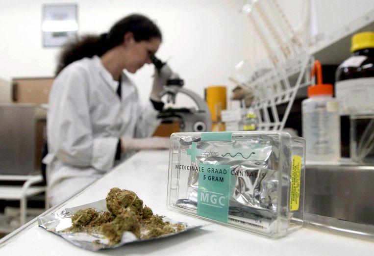 Rendocan wil een instituut bouwen om onderzoek te voeren naar medicinale cannabis.