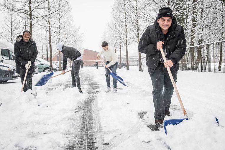 Een groepje enthousiaste asielzoekers kwam deze ochtend sneeuw ruimen op het Marktplein en de centrumparking in Ingelmunster.
