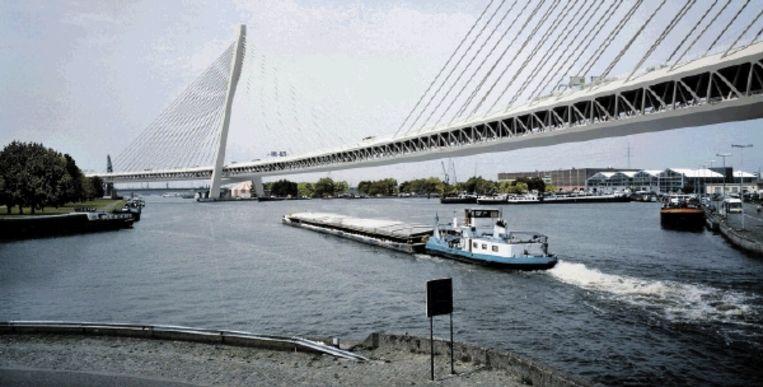 Impressie van de 'Lange Wapper', het omstreden viaduct dat aan 150 meter hoge 'torens' zou moeten komen te hangen. (IMPRESSIE BAM / KRISTIEN DAEM) Beeld