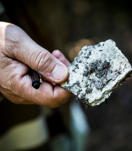 Zorgen om verplichte sanering asbestdaken in gemeente Borne