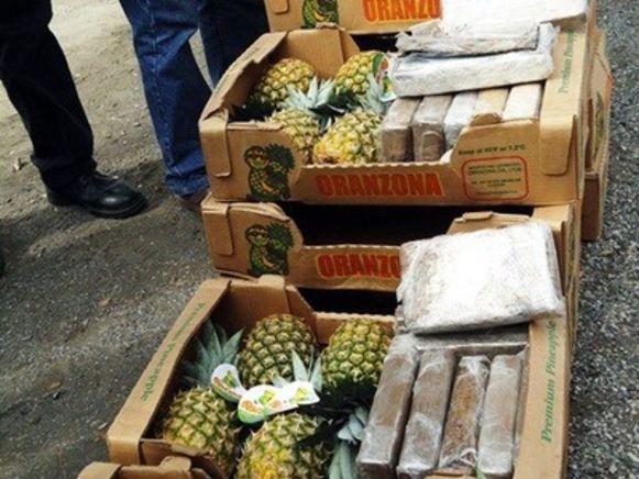 Cocaïne verstopt tussen ananas werd in januari 2018 ontdekt in een loods in Stabroek.