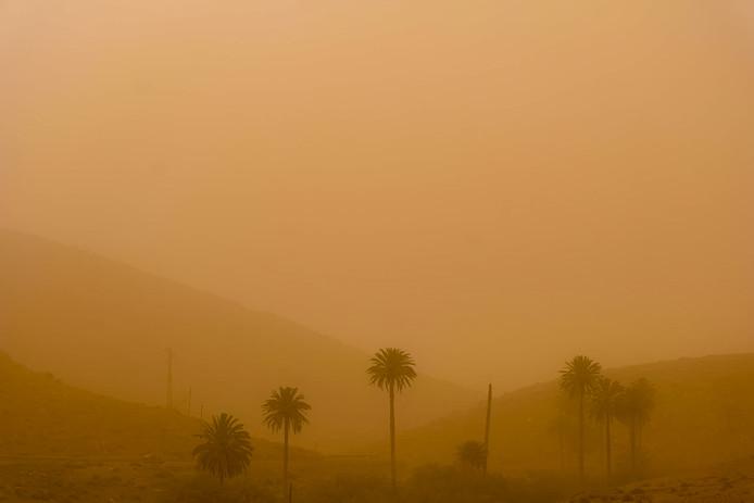 Oranje gekleurde luchten op het Spaanse eiland Fuerteventura. Door hevige zandstormen en bosbranden werden op de Canarische eilanden de afgelopen dagen meer dan 820 vluchten gecanceld.