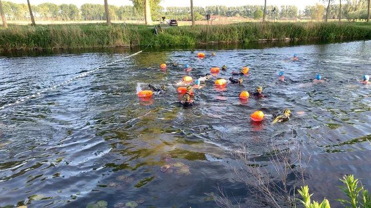 Start openwaterzwemmen Brugge
