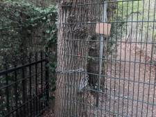 Eigenaar bosgebied bij Peppel Enk in Maarn moet afsluitingen en verbodsborden verwijderen