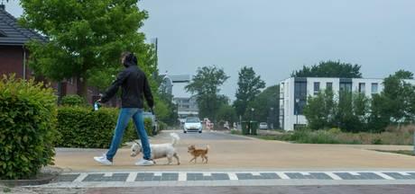 Gemeente overstag: toch extra drempels Koetshuislaan in Waalwijk