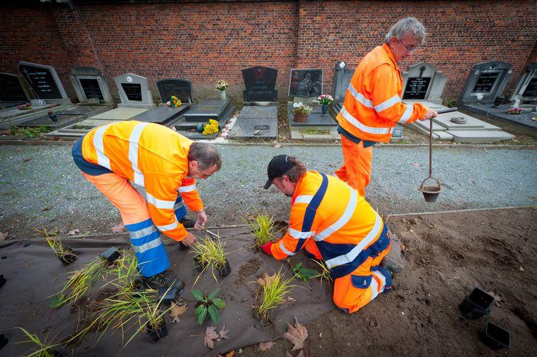 Arbeiders aan het werk op de begraafplaats van Bornem