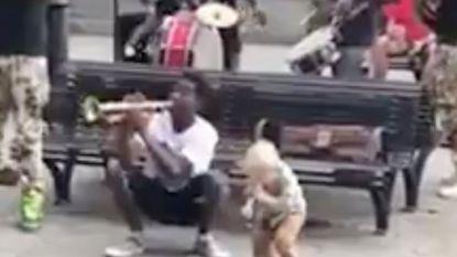 VIRAL3: Kleine sfeermaker speelt met straatmuzikanten