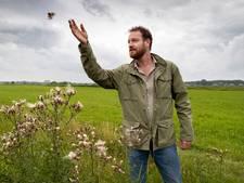Hoger waterpeil in Bossche Broek moet van saai grasland kleurrijke bloemenzee maken