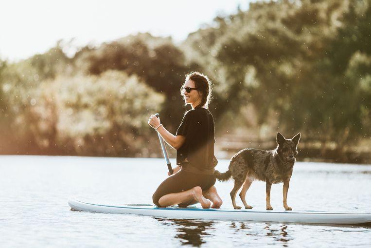 Wie wil, kan ook onder begeleiding leren suppen. Zo bestaan er zelfs workshops bij zonsondergang of met je hond.