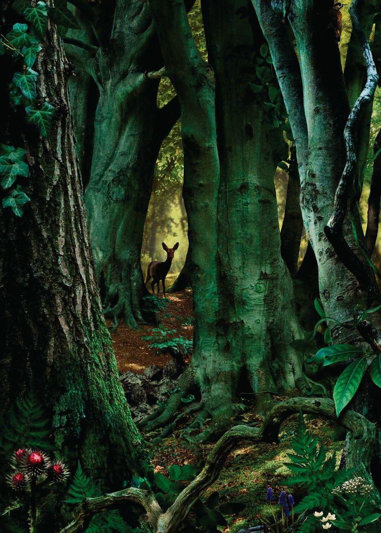 Study in Green #8, 2003. Privécollectie. Beeld Ruud van Empel