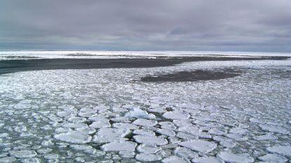 """Sinds 2014 smelt pakijs in Antarctica aan duizelingwekkende snelheid: """"Maar we weten niet waarom"""""""