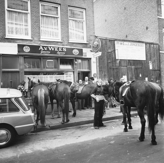 Paarden werden gevoerd voor een café in Amsterdam tijdens autoloze zondag in 1973.