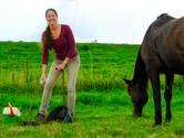 Gefascineerd door wondere wereld van de paardenpoep