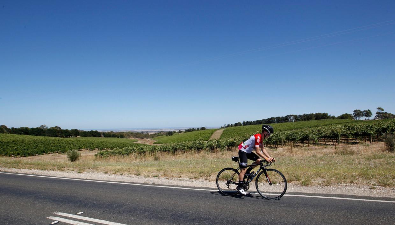 Bjorg Lambrecht tijdens de Tour Down Under in Australië vorig jaar.
