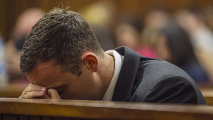 L'avocat a développé plusieurs arguments dans cette plaidoirie finale. Il a notamment avancé que Pistorius avait subi une terrible épreuve en étant présenté par la presse du monde entier, depuis le drame en février 2013, comme un meurtrier de sang froid et une tête brûlée.