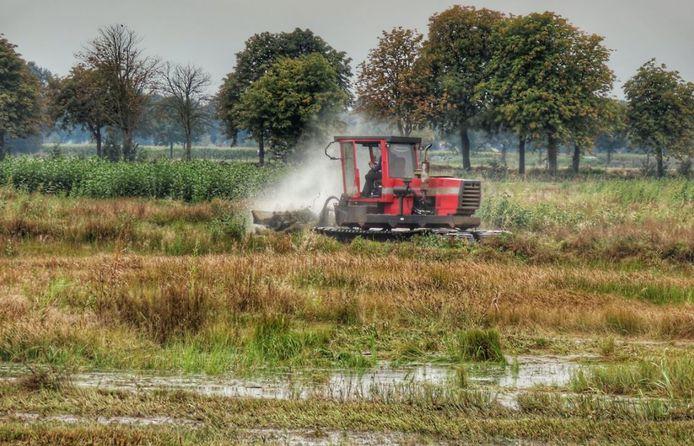 Voor de laatste keer dit jaar is er gemaaid in het Rijssense natuurgebied Overtoom-Middelveen.