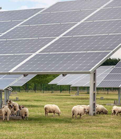 Dreun voor inwoners Cothen: plan voor zonnepark  niet afgeschoten