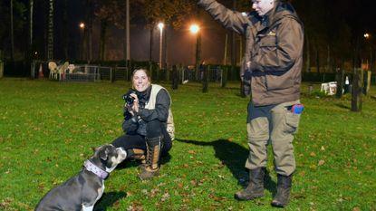 Liesbeth (39) laat honden schitteren in fotoshoot