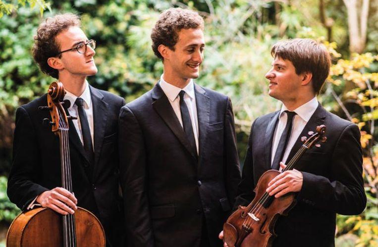 Het Bush Trio