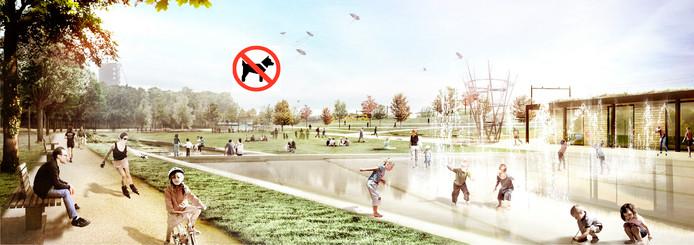Bij de oostelijke ingang bij de Hart van Brabantlaan kan de jongste jeugd plezier maken op het waterplein. Honden zijn er verboden,  al komt er wel een hondenlosloopveld.