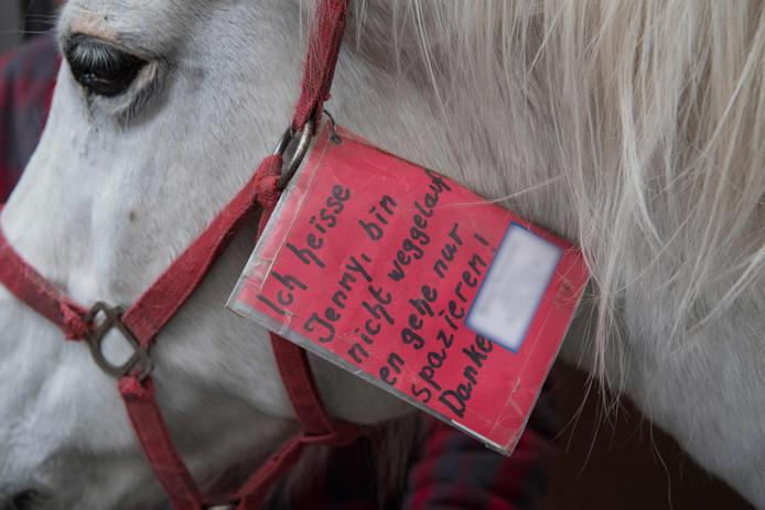 Jenny draagt een kaartje met de tekst: 'Ik heet Jenny, ben niet weglopen en ben alleen maar aan de wandel!'