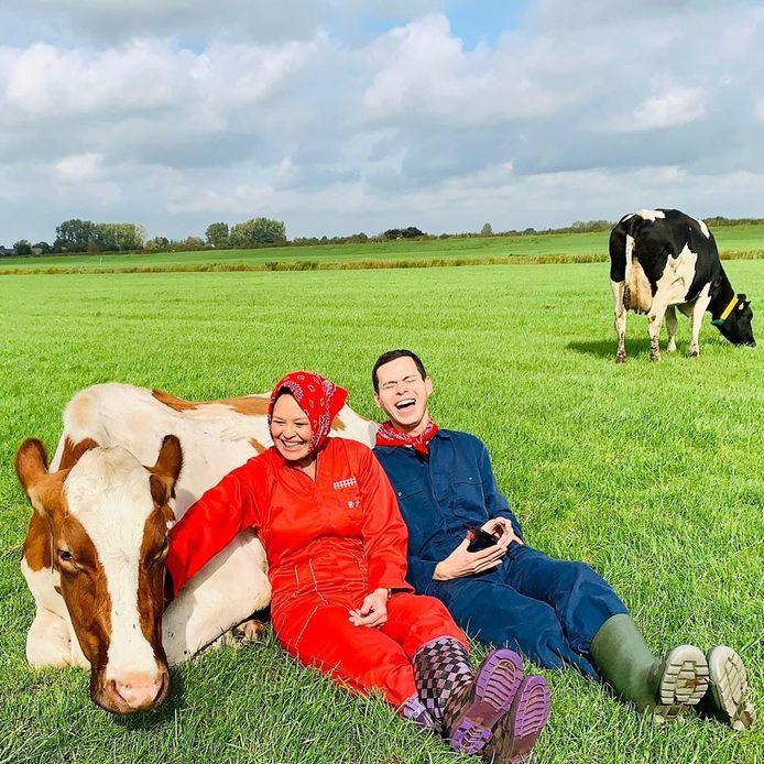 Een van Adams' hoogtepunten tijdens zijn trip door Nederland : het 'koe knuffelen' in Friesland.