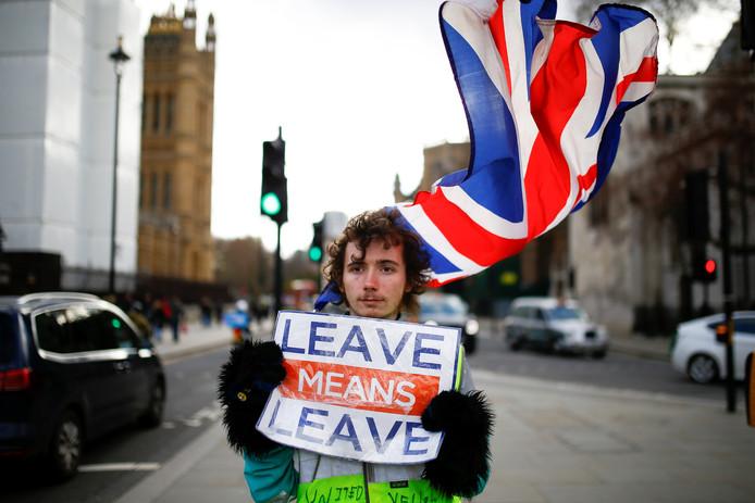 Een voorstander van de brexit demonstreert bij het Lagerhuis in Londen.